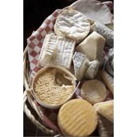 Liofilizuoti sūriai